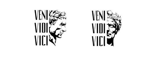 venividivici logo